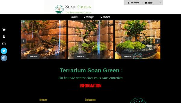 Terrarium Soan Green : Un bout de nature chez vous sans entretien