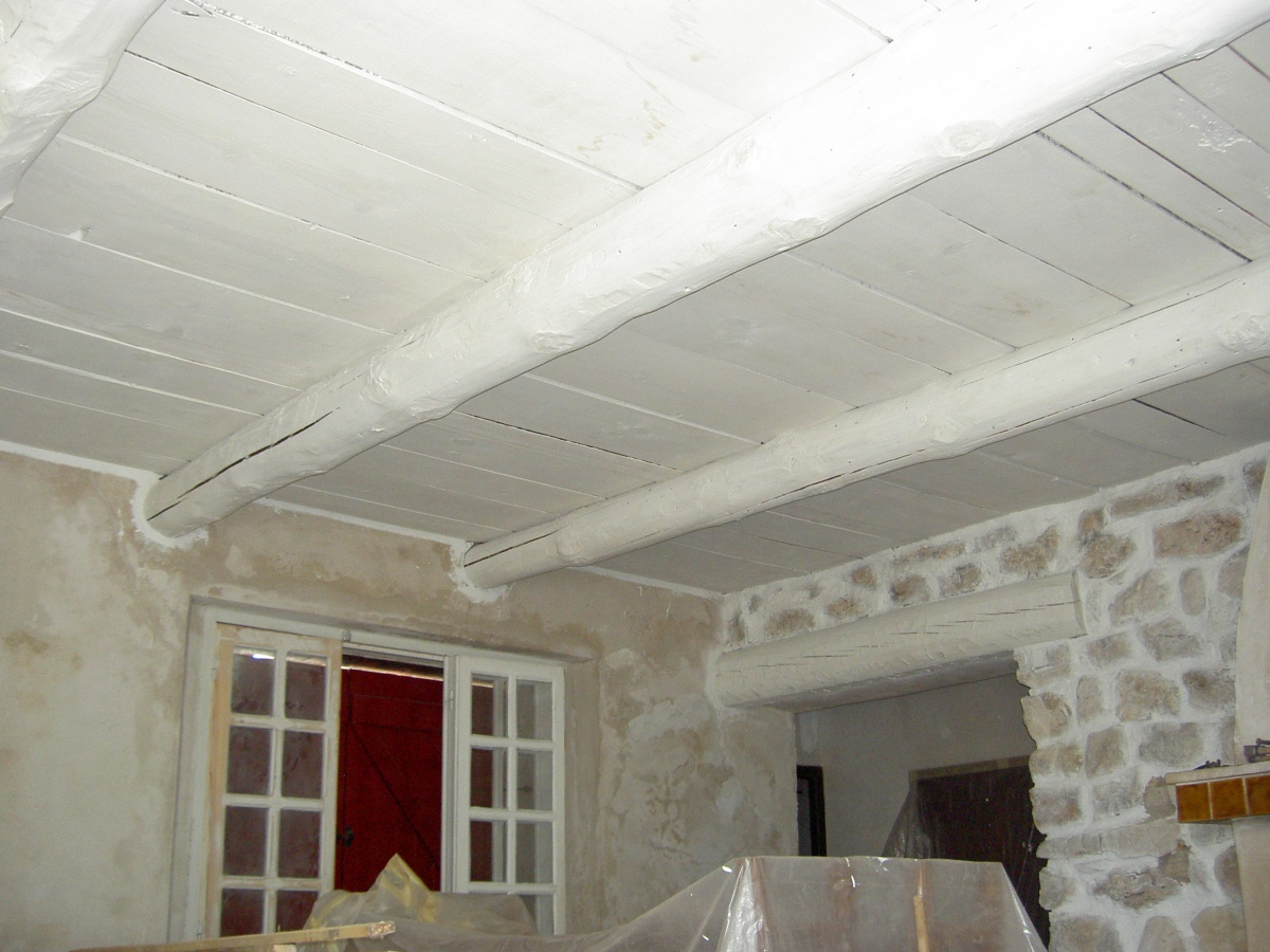 R novation plafond entreprise for Renovation plafond